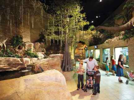 The Creation Museum in Kentucky features exhibits of humans coexisting with dinosaurs.