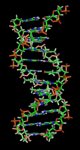 170px-DNA_orbit_animated_static_thumb