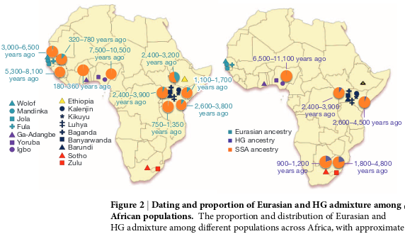 Adapted from The African Genome Variation Project shapes medical genetics in Africa