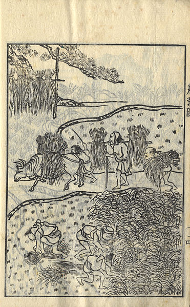Compendium on agriculture, Japan, 1782. Rice farming, which requires community planning of water use and irrigation, may have favored a less individualistic mindset in East Asia (Wikicommons)