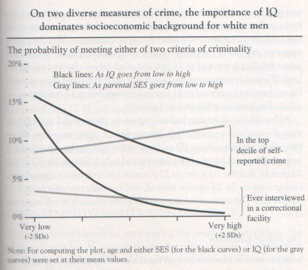 charles murray bell curve pdf