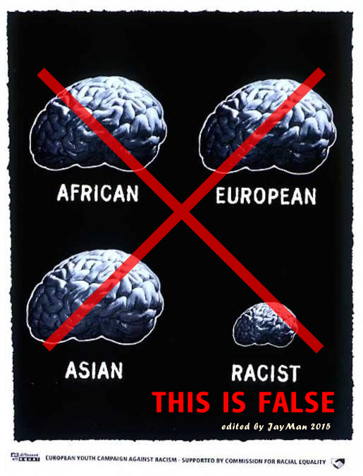 racist brain fix