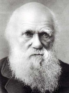 darwin-as-an-old-man-337-450-17