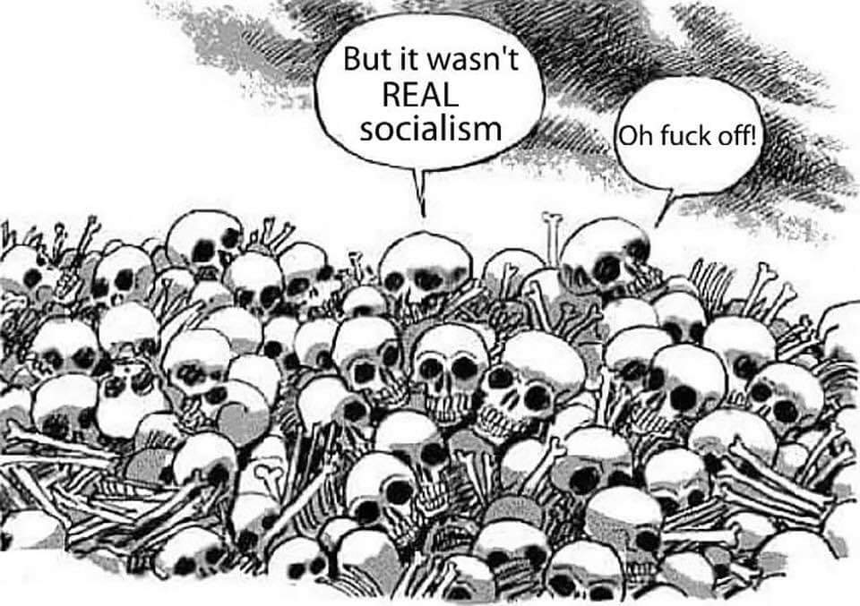 not-real-socialism